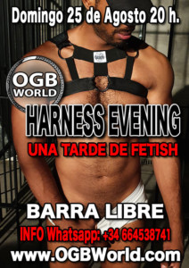 365-2019-08-25-OGB-Harness-Evening-Domingo-25-de-Agosto-2019-a-las-20-h